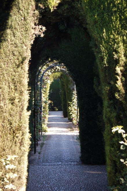 Photo is my own, taken at the Generalife gardens in Granada, Spain